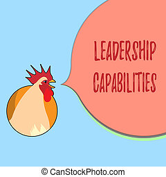 Word writing text Leadership Capabilities. Business concept for Set of Performance Expectations a Leader Competency