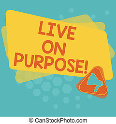 Word writing text Live On Purpose. Business concept for Have a goal mission motivation to keep going inspiration Megaphone Inside Triangle and Blank Color Rectangle for Announcement.
