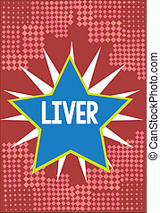 Word writing text Liver. Business concept for Large lobed...