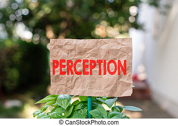 Word writing text Perception. Business concept for individuals organize and interpret their sensory impressions Plain empty paper attached to a stick and placed in the green leafy plants.