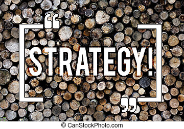 Word writing text Strategy. Business concept for Group of ideas planned to achieve success Wooden background vintage wood wild message ideas intentions thoughts.