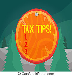 Word writing text Tax Tips. Business concept for compulsory contribution to state revenue levied by government Oval plank rounded pinned wooden board circle shaped wood nailed background.