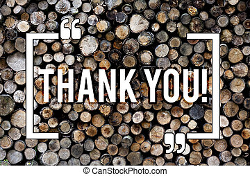 Word writing text Thank You. Business concept for Appreciation greeting Acknowledgment Gratitude Wooden background vintage wood wild message ideas intentions thoughts.
