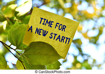 Word writing text Time For A New Start. Business concept for something is supposed to begin right now Fresh job Piece of square paper use to give notation on tree leaf under sunny day.