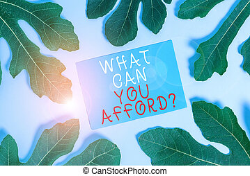 Word writing text What Can You Afford Question. Business concept for Give us your budget availability of money.