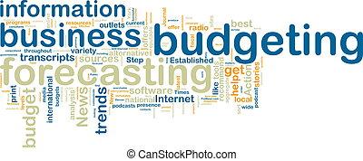 wordcloud, presupuestación