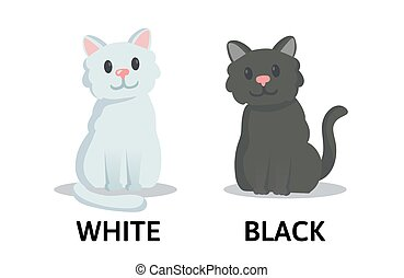 Words white and black flashcard with cartoon animal characters. Opposite adjectives explanation card. Flat vector illustration, isolated on white background.