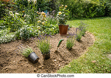 Work in garden