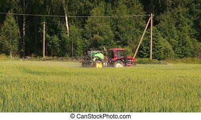 work srpay tractor corn - farmer spraying wheat field at...
