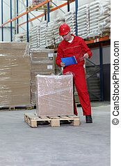 worker checking inventory stocks