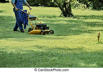 Worker cut grass