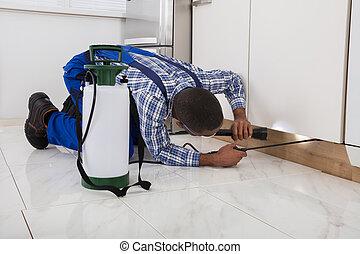 Worker Kneeling On Floor And Spraying Pesticide