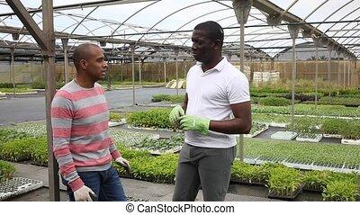 Communication between two gardeners during break between work in the orangery