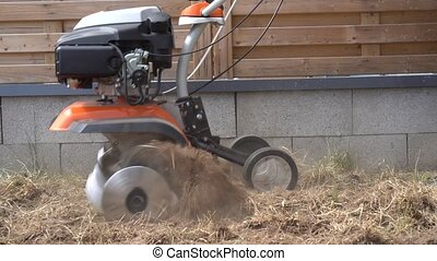 worker loosens soil with walking tractor in house yard....