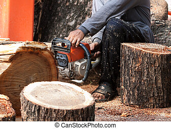 worker man cutting tree by chain saw engine