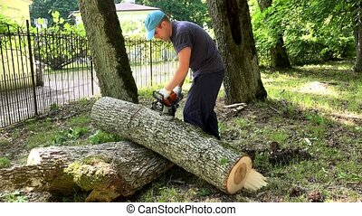 Worker man sawing tree trunk into pieces with chainsaw.