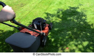 worker mow lawn cutter - worker man with shorts and...