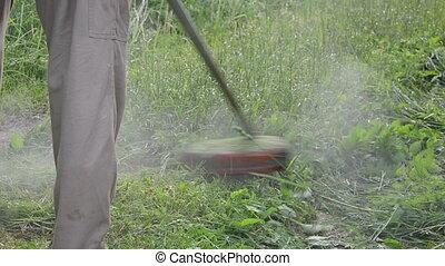 worker mow wet grass - worker gardener mowing grass with...