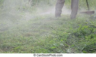 worker mow wet grass - worker gardener mow grass with fuel...