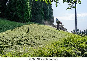 Worker mowing lawn in garden.