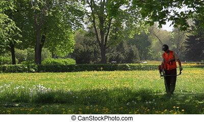 Worker mows grass lawnmower at Peterhof - SAINT-PETERSBURG -...