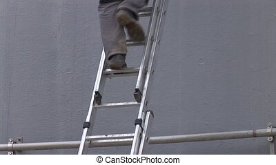 Worker On Ladder