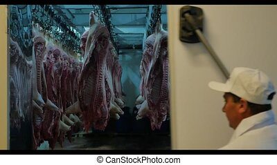 worker open refrigirator with pork carcasses hanging on...