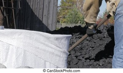 worker packs coal in bags. Man with shovel and heap coal in...