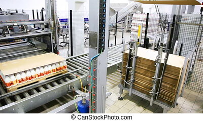 worker puts fiberboard sheets on rack for industrial robots palletizing at dairy factory