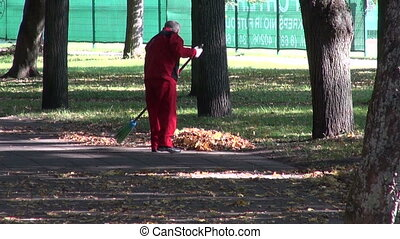 worker raking autumn leaves in park