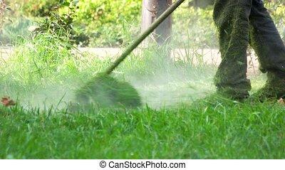 Worker using a lawn trimmer mower cutting grass.