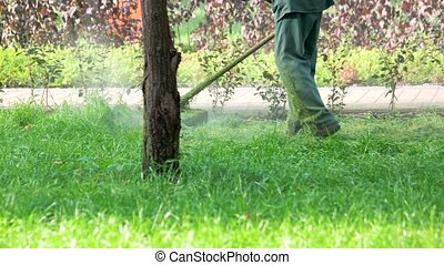 Worker with a string lawn trimmer mower cutting grass.