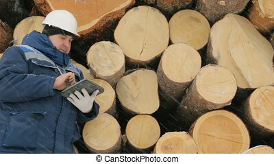 Worker with tablet computer against big pile of logs in...
