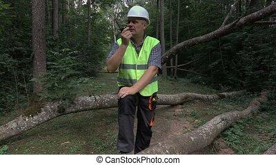 Worker with walkie talkie near fallen trees