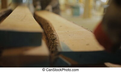 workers take wooden board for further processing on machine...