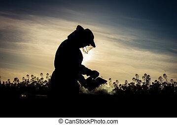Working apiarist silhouette - Working apiarist silhoutte...