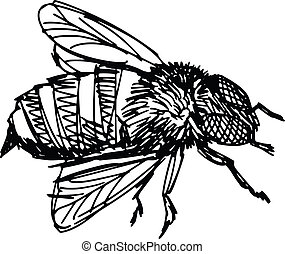 working bee - sketch, doodle, hand drawn illustration of bee