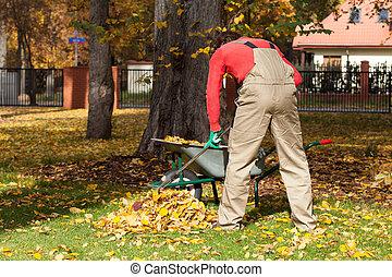 Working gardener in a garden