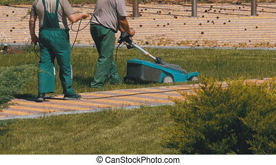 Working Gardeners Mows the Grass with an Electric Lawn Mower...