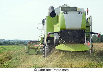 working harvesting combine in field