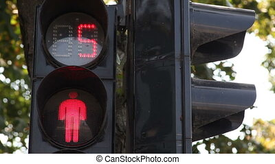 Working pedestrian traffic lights - Pedestrian traffic light...