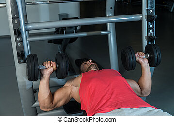 Workout Bench Dumbbell Training