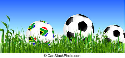 World Cup South Africa balls on the grass
