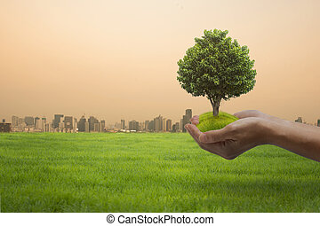 World Environment Day concept: hands holding big tree over city background.