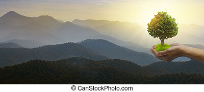 World Environment Day concept: hands holding big tree over sky and mountain background.
