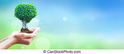 World Environment Day concept: Human hands holding big tree...