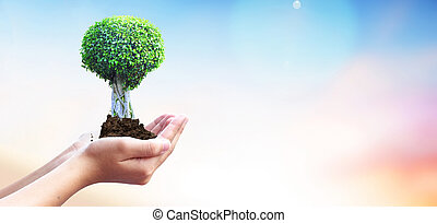 World Environment Day concept: protect the Earth - World...