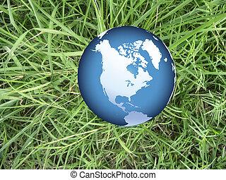 world globe on grass