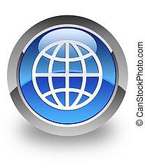 World glossy icon