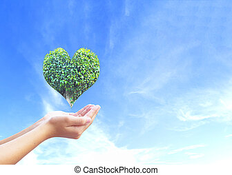 World Heart Day concept: man opens palms and drags heart shaped green plants